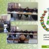 بلدية آيت ملول تنظم المسابقة الثقافية الفنية و الرياضية لفائدة تلاميذ المؤسسات التعليمية بالمدينة