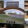 جماعة أيت ملول تساهم في إعادة البسمة للغابة الحضرية أدمين.