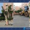 إعادة الإعتبار لحديقة القرب (بلوك الكحل) بحي الشهداء