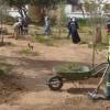 حملة نظافة للقطب الجامعي إبن زهر أيت ملول