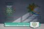 المجلس والجمعية الرياضية لفرق الأحياء بأيت ملول يتدارسون سبل دعم أنشطة فرق الأحياء